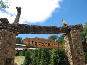 Grizzly Ridge Sign