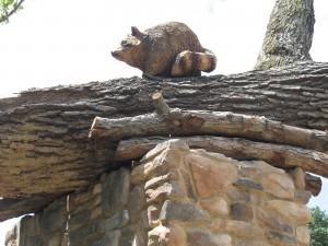 Carved Raccoon